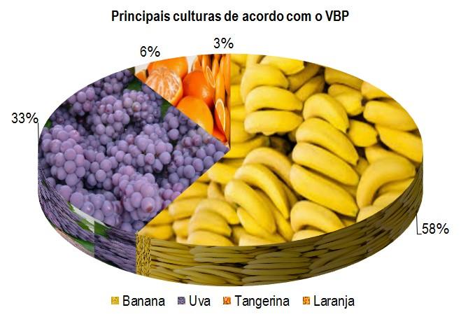 pirapora_pc.jpg