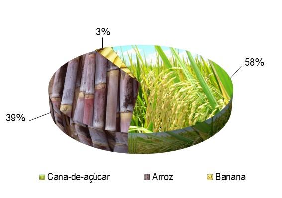 boacica_culturas.jpg