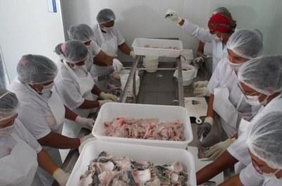 Beneficiamento de resíduos de pescado