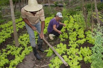 Kits de Irrigação