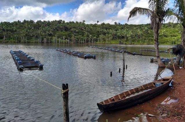 Codevasf promove encontro da cadeia produtiva da aquicultura no norte do Piauí