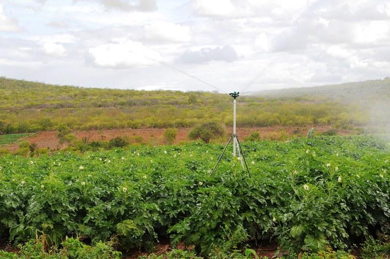 Tecnologia de irrigação