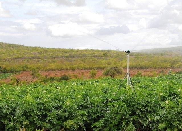 Tecnologias de irrigação
