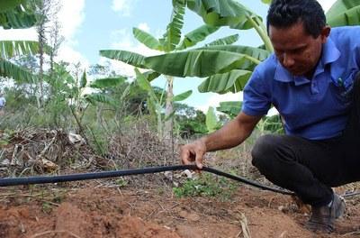 Kit de irrigação Alagoas