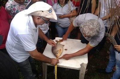 Codevasf realiza treinamento em piscicultura no Maranhão