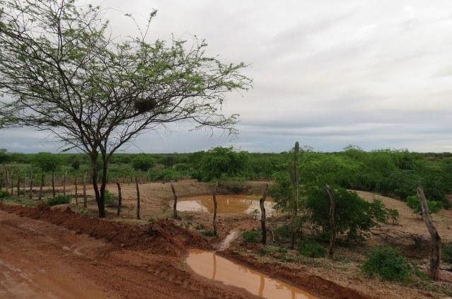Barraginhas no Norte da Bahia