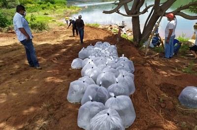 Peixamento na barragem de Ceraíma.jpg