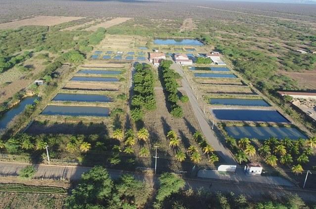 Codevasf moderniza estrutura do Centro Integrado de Recursos Pesqueiros e Aquicultura de Xique-Xique.jpg