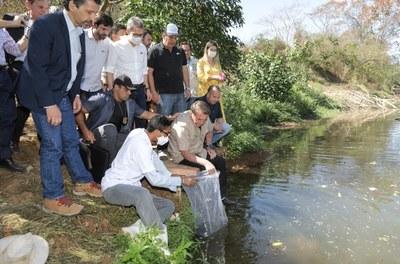 Peixamento no rio Urucuia (MG)