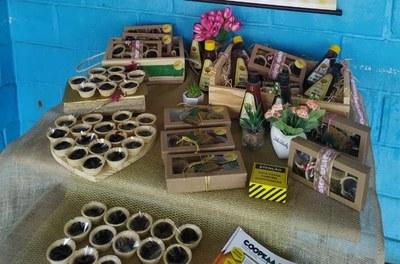 Produção de doces artesanais à base de banana e mel gera renda para mulheres no Norte de Minas.jpg